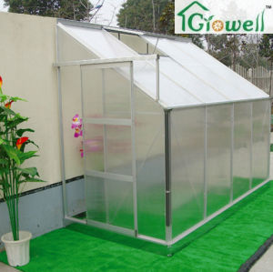 Limited Space Use Lean-to Greenhouse (LB Series) pictures & photos