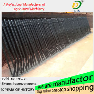 Best Price Loading Tines. From China. pictures & photos