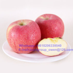 Yantai Origin New Crop Fresh FUJI Apple pictures & photos
