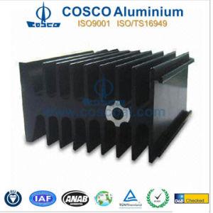 Customized Black Anodized Aluminum/Aluminium Radiator (REACH 155) pictures & photos