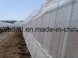 20/10 Mesh Insect Net pictures & photos