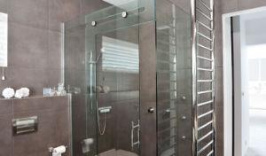 3-19mm Bathroom Tempered Glass Door with En12150-1 & AS/NZS2208: 1996 pictures & photos