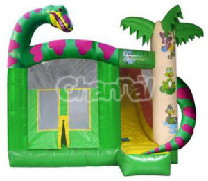 Dinosaur Inflatable Bouncer/Inflatable Mini Jumper Combo Bb019 pictures & photos