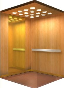 Special Wooden Finishes Enjoyable Elevator (CAR94)