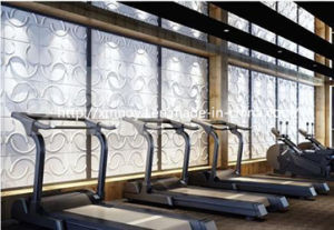 Acoustic Sound Insulation 3D Board/Panel for Gym Wall Decorative pictures & photos