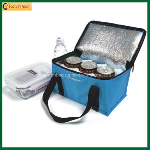 Outdoor Insulated Picnic Bag 6 Canscooler Bags (TP-CB371) pictures & photos