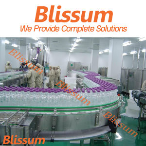 Famous Liquid Making and Packing Line pictures & photos