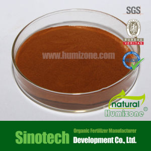 Humizone Leonardite Fertilizer: 90% Fulvic Acid Powder (FA90-P) pictures & photos