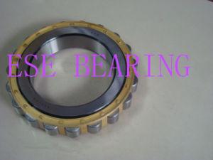Cylindrical Roller Bearing Eccentric Bearing (RN228M)