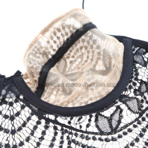 New Design Ladies Transparent Lace Panty and Bra pictures & photos