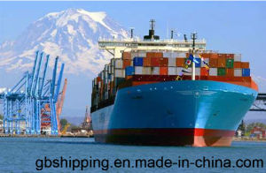 Shipping Service/ Logistics / Shipping Forwarder From China to Middle East Ports