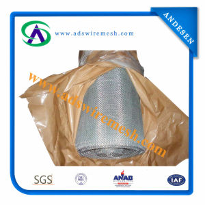 High Quality Galvanized Square Wire Mesh (hot sale & factory price) pictures & photos
