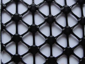 Multidirection Stretched Plastic/PP Geogrid for Reinforcement pictures & photos