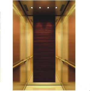Passenger Elevator with Small Machine Room (Q05) pictures & photos