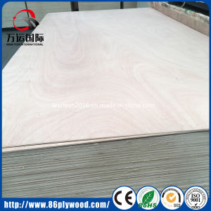 Bintangor / Okoume Veneered Poplar Timber Commercial Plywood pictures & photos