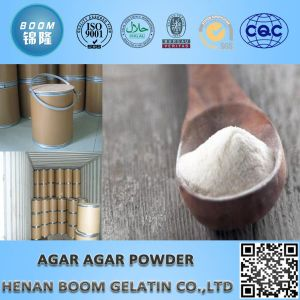Hot Sale High Quality High Gel Strength 1200g/Cm2 Agar-Agar Powder pictures & photos