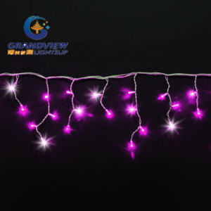 280 LED Pink Color 60 Drops Icicle Curtain (L4, 5mxH20/40/80cm) pictures & photos
