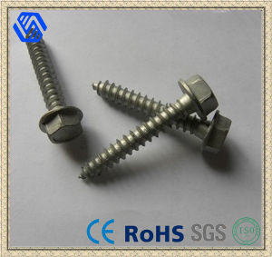 Cheapest DIN 933 Grade 8.8 Hexagon Flange Bolt pictures & photos