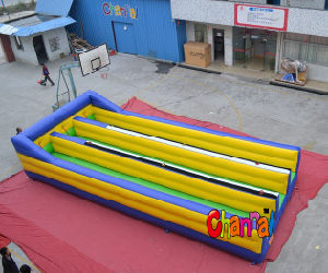 Double Inflatable Bungee Run for Adult Sale pictures & photos