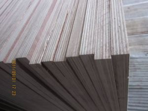 Best Price Hardwood Plywood with Full Eucalyptuc Core for Furniture or Construction pictures & photos