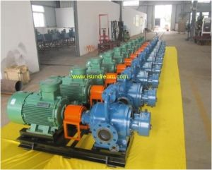 V. W High Efficiency Double Screw Pump pictures & photos