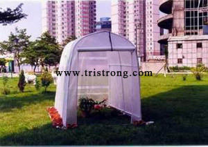 Greenhouse, Hothouse, Garden Shed (TSU-162G) pictures & photos