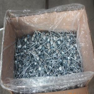 Umbrella Roofing Nails with Screw pictures & photos