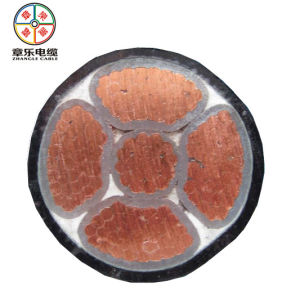 Low Voltage Copper/ Aluminum Cable Wire pictures & photos