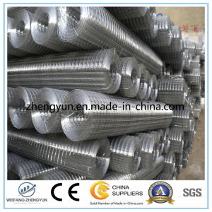 Chinese Supplier Galvanized Welded Wire Mesh pictures & photos
