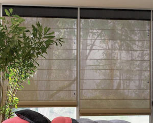 New Design Quality Roman Blind pictures & photos