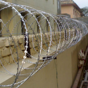Hot-Dipped Galvanized Cross Type Razor Wire pictures & photos