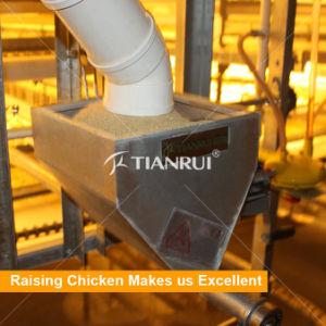 Galvanized Steel H Frame Chicken Raising System pictures & photos