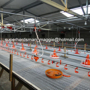 High Quality Automatic Poulty Feeder for Broiler pictures & photos