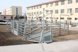 Hot Dipped Galvanized Adjustable Cattle Loading Ramps pictures & photos