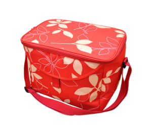 Cooler Bag (NF-C021) pictures & photos