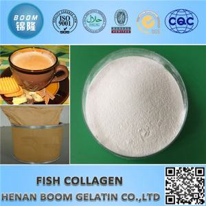 Cosmetic Grade Fish Collagen for Whitening, Repair, Moisturizing pictures & photos