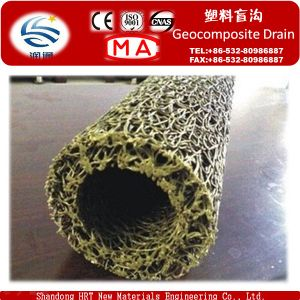 Plastic Geocomposite Drain for Highway Construstion pictures & photos