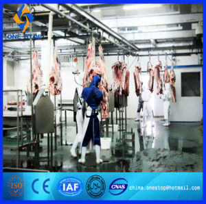 China Cattle Slaughter Line Livestock Abattoir Equipment Machine Sheep and Goat for Lamb Cow pictures & photos