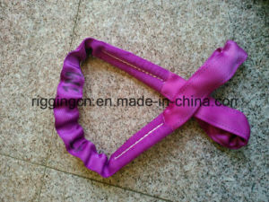 Double Ply Eye&Eye Flat Web Sling pictures & photos