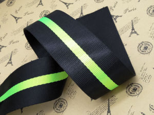 Striped Imitation Nylon Webbing for Bag Accessories pictures & photos