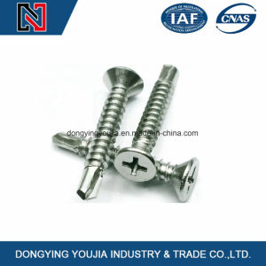 Crossrecessed Contersunk Self-Drilling Tapping Screws pictures & photos