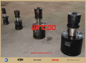 Simple Type Hydraulic Jacks pictures & photos