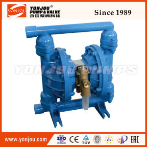 Air Operated Double Diaphragm Pump pictures & photos