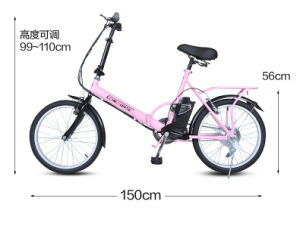 Foldable Electric Bicycle (T2009) pictures & photos