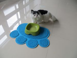 Pet Product Cat Litter Mat Pet Dog Mat pictures & photos
