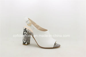 2017 New Fashion Women High Heel Sandal Lady Shoes pictures & photos