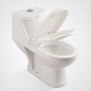 Hot Sale Porcelain Water Saving Washdown One Piece Toilet pictures & photos