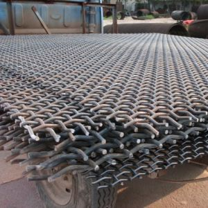 2017 China Manufacturer Supplier of Manganese Steel Screen (MSS) pictures & photos