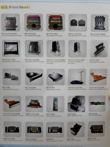 All Spare Parts for Infiniti/Challenger /Galaxy/Lecai/Roland/Flora/Wit Color/All Win Printers pictures & photos