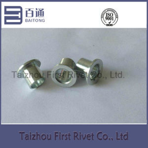 9.7X10mm White Zinc Plated Flat Head Fully Tubular Steel Rivet pictures & photos